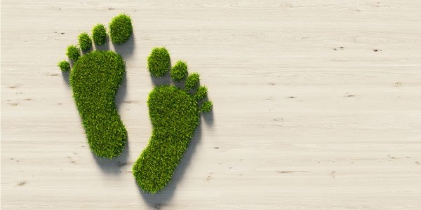 Help Reduce Your Carbon Footprint