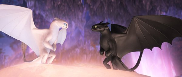 Light Fury and Toothless are bonded for life