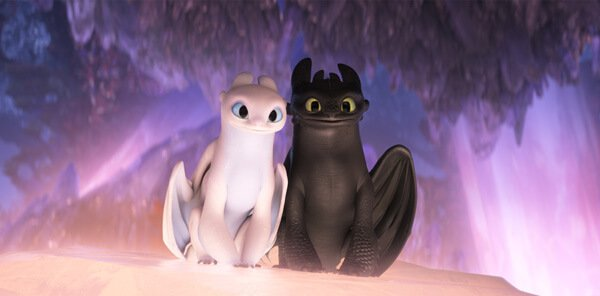 Toothless and love Light Fury in the hidden world