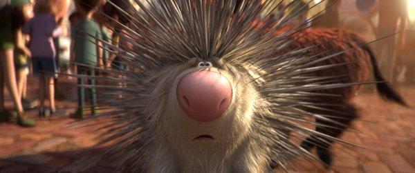 Porcupine Steve
