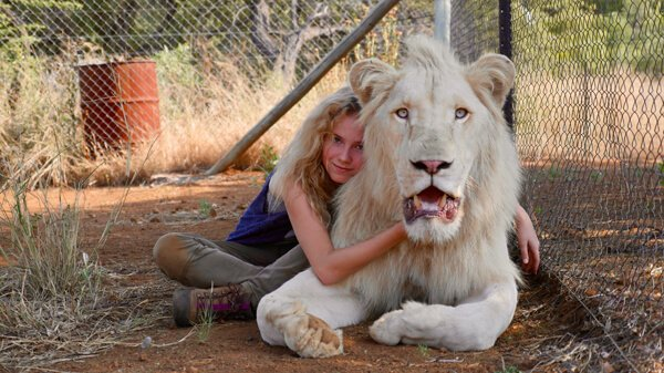 Daniah is white lion, Thor