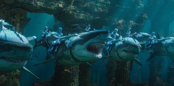Warriors riding sharks