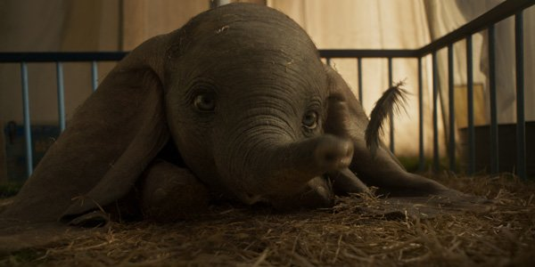Feature dumbo review feat