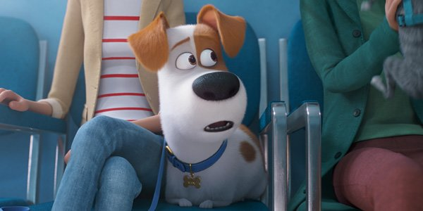 Celebrate National Pets Day with The Secret Life of Pets 2