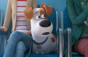 Preview the secret life of pets 2 pre