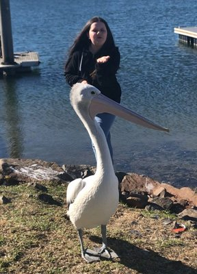 Shalise has such a unique and beautiful friendship with a pelican I named Mr. Percival