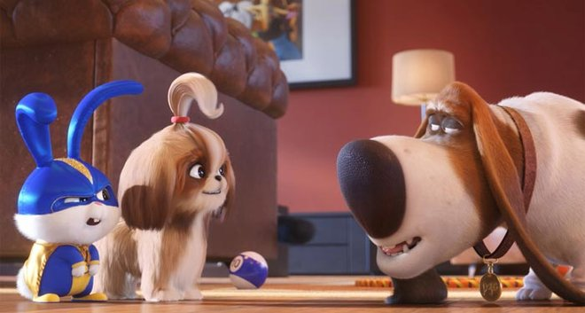 Snowball, Diasy and Pops in The Secret Life of Pets 2