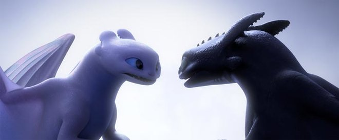 Toothless and the White Fury are in love