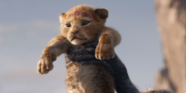 Interview: The Lion King Cast Roars!