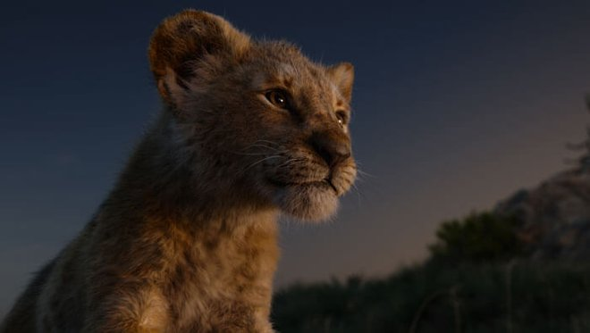 Simba can't wait to be king