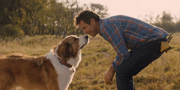 A Dog's Journey Blu-ray Review